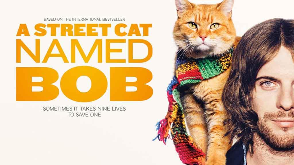 ქუჩის კატა სახელად ბობი