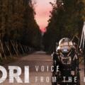 სორი: ხმა გულიდან