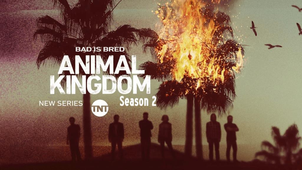 ცხოველთა სამეფო