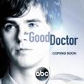 კარგი ექიმი (სეზონი 1)