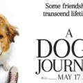 ძაღლის მოგზაურობა