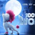 100% მგელი